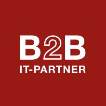 Bild på B2B IT-Partner WordPress